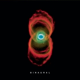 Pearl Jam / Binaural (2017) [2LP] Import