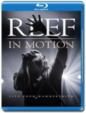 Reef / In Motion - Live from Hammersmith [Blu-Ray]