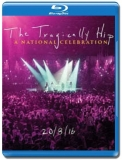 The Tragically Hip / A National Celebration [Blu-Ray]