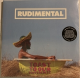 Rudimental ‎– Toast To Our Differences [2LP] Import