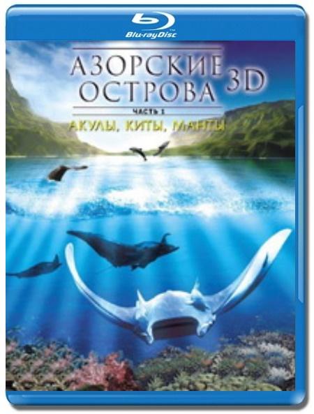 Азорские Акулы Скачать Торрент - фото 9