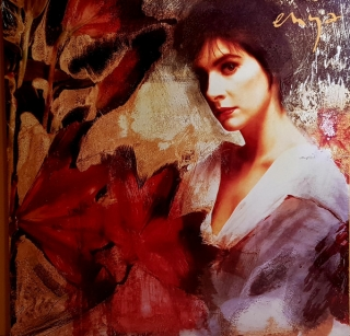 Enya ‎– Watermark [LP] Import