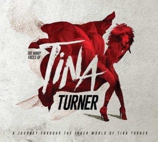 Various ‎– The Many Faces Of Tina Turner [3CD] Import